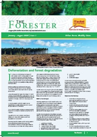 The-Forester-Issue-1-2020.jpg
